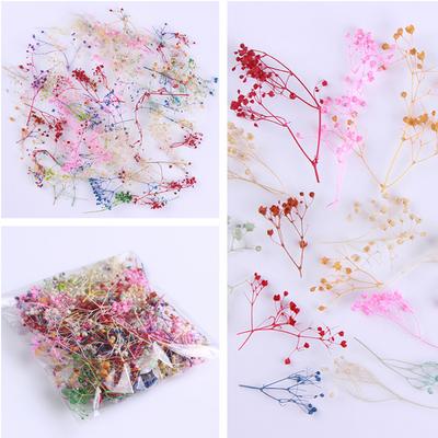 10g-Bag-Dried-Flower-Cornflower-Pretty-Preserved-Flower-3D-DIY-Manicure-Nail-Art-Decoration.jpg